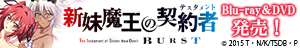「新妹魔王の契約者(テスタメント) BURST」Blu-ray&DVD発売!1巻・2巻・3巻Blu-rayで、とらのあな限定版の発売も大決定!!